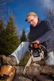 Un bûcheron utilise une tronçonneuse. Photo stock