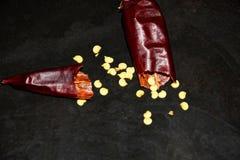 Un baccello rotto di peperone caldo con i semi immagine stock
