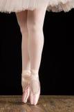 Un bailarín de ballet que se coloca en los dedos del pie en los pétalos color de rosa con el backg negro Foto de archivo libre de regalías
