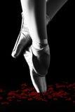Un bailarín de ballet que se coloca en los dedos del pie en los pétalos color de rosa con el backg negro Imagen de archivo