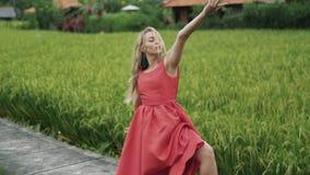 Un bailarín de sexo femenino realiza una danza lenta en naturaleza, disfruta de la belleza de los campos del arroz, del sol y de  almacen de video
