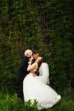 Un baiser de passion juste de la position mariée derrière la haie verte Photos libres de droits