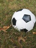 Un balón de fútbol de los deportes imagen de archivo