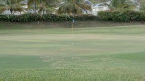 Un balanceo de la pelota de golf cerca del agujero metrajes