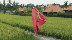 Un ballerino giovane solo cammina lungo il terrazzo del riso in un vestito di seta lungo rosso, balli, alza la sua gonna scorrent archivi video