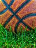 Un baloncesto en la hierba fotos de archivo libres de regalías