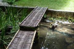 Un bambù di via Fotografia Stock