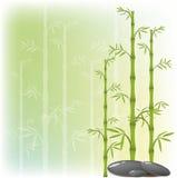 Un bambú y una piedra Imagen de archivo libre de regalías