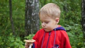 Un bambino cammina in parco in autunno Un bambino tiene un fungo bianco archivi video
