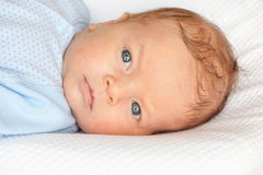 Un bambino di mese Fotografie Stock