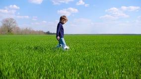 Un bambino felice felicemente cammina e dà dei calci ad un pallone da calcio attraverso un campo di erba verde al rallentatore video d archivio
