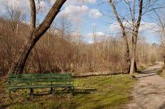 Un banc à côté d'une traînée de marche dans les bois Image stock