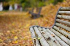 Un banc avec des feuilles d'automne Images libres de droits