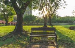 Un banc de fer en bois et travaillé sur la cour verte fraîche d'herbe de tapis, la pelouse lisse sous les arbres verts près d'un  image stock
