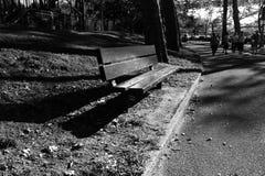 Un banc de parc au parc dans le style noir et blanc Image stock