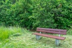 Un banc gratuit pour vous sur une promenade Photos libres de droits