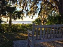 Un banc jette un coup d'oeil par les chênes et les paumes à la rivière images libres de droits