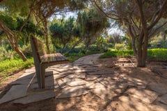 Un banc le long d'un chemin ombragé par les arbres grands, Abu Dhabi photo libre de droits