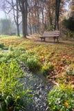 Un banc vide en parc avec des arbres près d'une crique Photo libre de droits