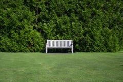 Un banco de madera vacío en el medio de un campo verde con un fondo del arbusto grande verde Imagen de archivo