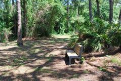 Un banco de parque en una tranquilidad rústica Imagen de archivo libre de regalías