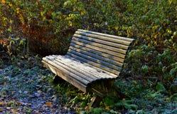 Un banco en el parque del otoño Fotos de archivo