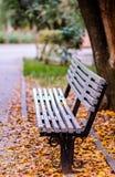 Un banco en parque del otoño Foto de archivo