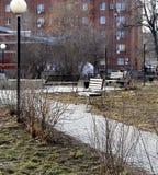 Un banco solo en un parque de la ciudad Fotografía de archivo