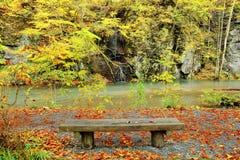 Un banco vuoto tramite la corrente misteriosa di Oirase nella foresta di autunno del parco nazionale di Towada Hachimantai in Aom Fotografie Stock
