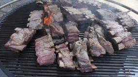 Un barbecue americano dietro la città per una grande compagnia durante un weekend Cottura ravvicinata di grandi pezzetti di mater archivi video