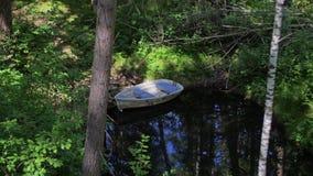 Un barco de madera abandonado se coloca en un lago en el medio del bosque almacen de video
