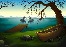 Un barco debajo del árbol cerca del mar con dos patos Foto de archivo libre de regalías