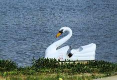 Un barco del pedal para un paseo en la laguna fotos de archivo libres de regalías