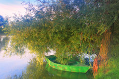 Un barco en un árbol en la orilla de un lago brumoso Foto de archivo