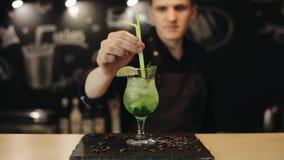 Un barman décore un cocktail de mojito avec une paille verte banque de vidéos