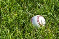 Un baseball bianco sull'erba verde fresca fotografie stock
