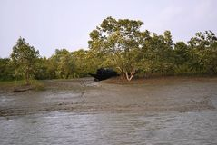 Un bateau solitaire images libres de droits