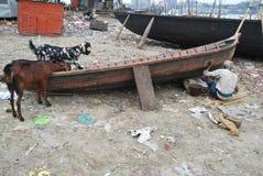 Un batelier font le bateau chez Sadarghat sur le Buriganga Image stock
