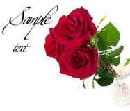 Un beau bouquet de trois roses rouges Photos libres de droits