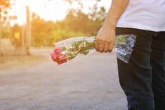 Un beau bouquet des roses rouges est tenu en main de la femme âgée par milieu sur la nature extérieure avec le fond d'effet de so Photo stock