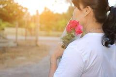 Un beau bouquet des roses rouges est tenu par la femme âgée par milieu sur la nature extérieure avec le fond d'effet de soleil Am Photographie stock libre de droits