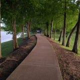 Un beau chemin à travers les bois image libre de droits