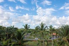 Un beau ciel bleu au-dessus de la jungle où la route passe Photo libre de droits