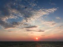 Un beau coucher du soleil et oiseaux Photographie stock libre de droits