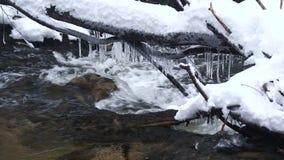 Un beau courant clair comme de l'eau de roche en hiver avec la neige traverse des bois clips vidéos