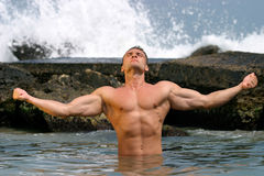 Un beau, homme de muscle Photos stock