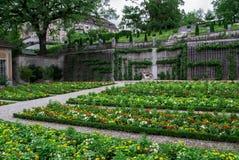 Un beau jardin botanique photos libres de droits