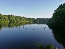 Un beau lac images stock