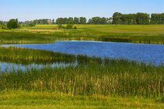 Un beau lac pour des poissons d'élevage Image libre de droits
