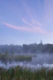 Un beau matin brumeux Images libres de droits